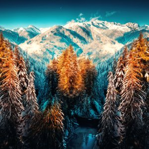 snow-landscape-mountains-trees-forest-5k-4u-5120x2880.jpg
